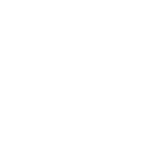 wesner lab logo final white-01